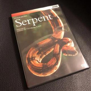 BBC ワイルドライフ・スペシャル DVD Serpent  ヘビ(ドキュメンタリー)