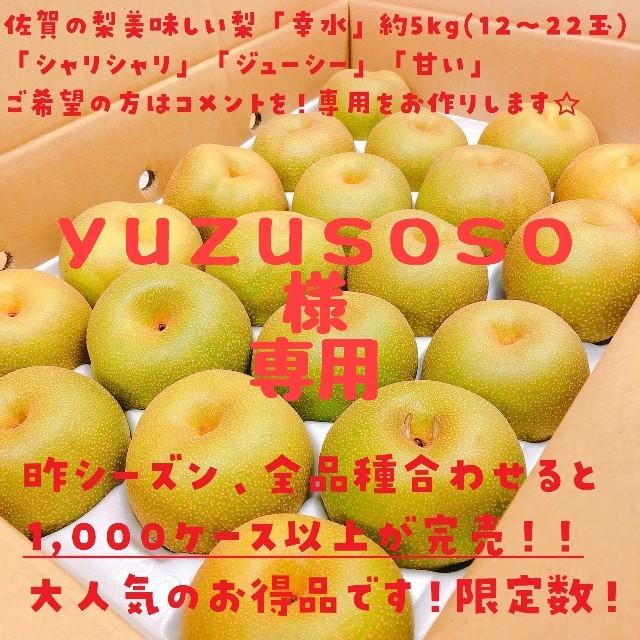 【yuzusoso様専用】美味☆「幸水」梨☆約5kg(12玉~22玉)佐賀県産☆ 食品/飲料/酒の食品(フルーツ)の商品写真