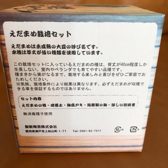 えだまめ栽培セット 食品/飲料/酒の食品(野菜)の商品写真