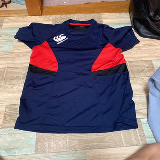 CANTERBURY - canterbury スポーツシャツ
