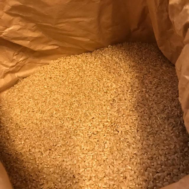 キヌムスメ 20 食品/飲料/酒の食品(米/穀物)の商品写真