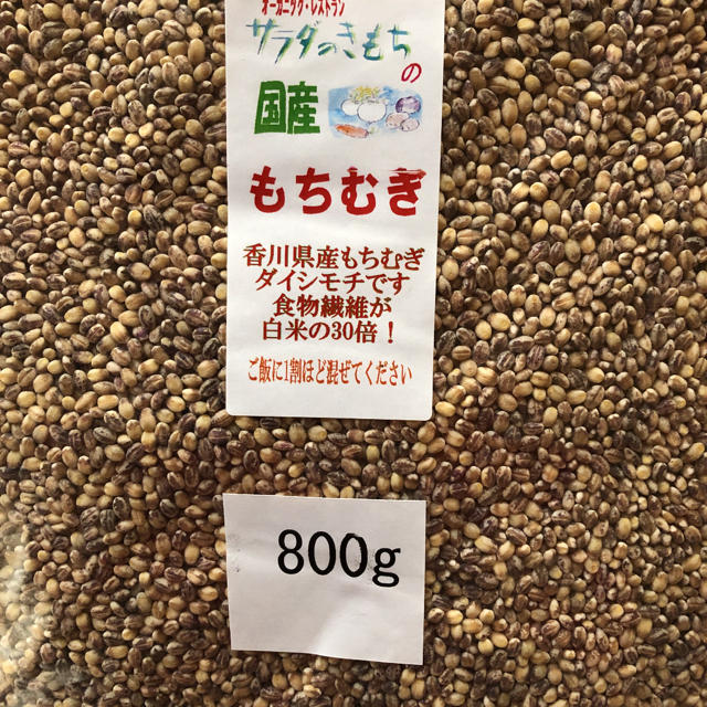 もちむぎ 800g 食品/飲料/酒の食品(米/穀物)の商品写真