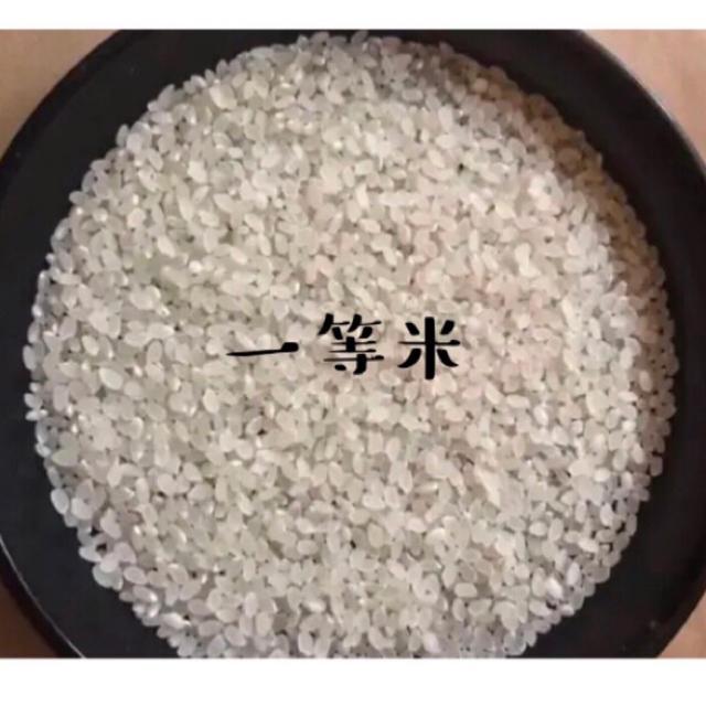 農家直送☆自慢のお米☆白米5キロ 食品/飲料/酒の食品(米/穀物)の商品写真