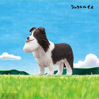 タカラトミーアーツ(T-ARTS)の《新品》シャクレルプラネット 5 イヌ(その他)