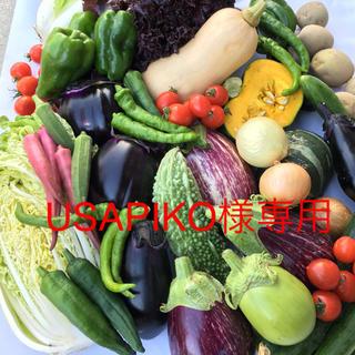 野菜BOX S  USAPIKO様専用(野菜)