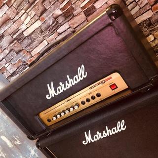 Marshall AVT20 改ヘッド1922キャビサイズ