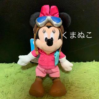 ミニーマウス(ミニーマウス)のTDRソアリンファンタスティック ミニーちゃんぬいぐるみバッジ(キャラクターグッズ)