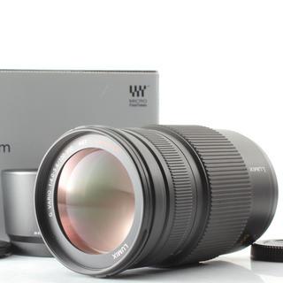 Panasonic - ✨激レア✨極上美品✨LUMIX 100-300mm F4-5.6