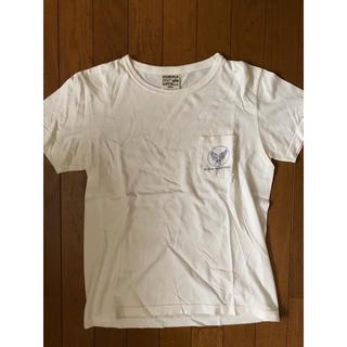 アルファ(alpha)の【送料無料】ALPHA Tシャツ(Tシャツ/カットソー(半袖/袖なし))