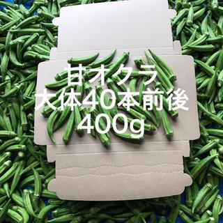 鹿児島産甘オクラ400g^_^(野菜)