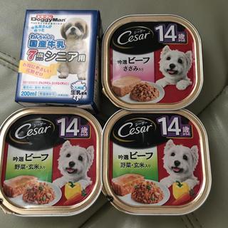 シーザー(CASAR)のシーザー3缶、シニア用ミルク(犬)