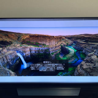 LG Electronics - ★LGエルジーOLED55E8PJA 6年保証 4K有機ELテレビ 値下げ