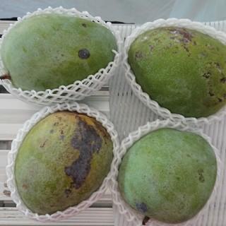 28 キーツマンゴー 2.7kg 家庭用 黒点あり(フルーツ)