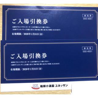 箱根小涌園 ユネッサン 入場引換券 2枚