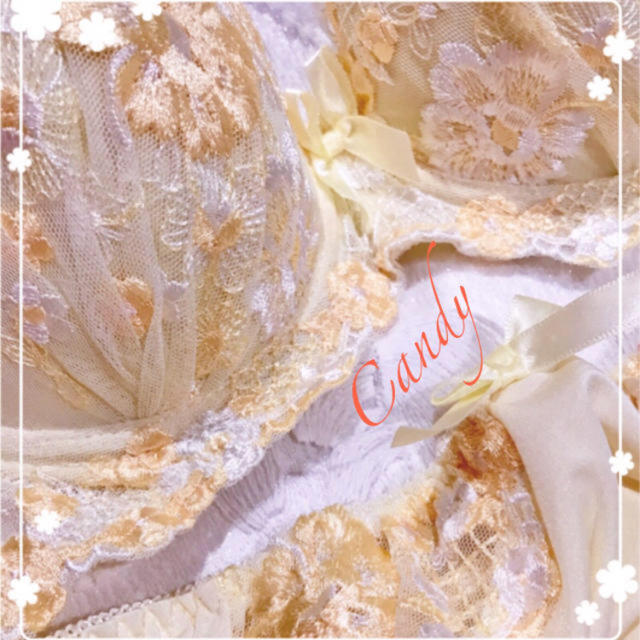 A75本当に可愛い❤️豪華お花刺繍❤️ブラジャーショーツ レディースの下着/アンダーウェア(ブラ&ショーツセット)の商品写真