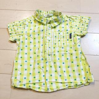 サンカンシオン(3can4on)の美品 3can4on ドットシャツ(Tシャツ/カットソー)