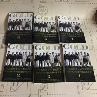 天海祐希  GOLD  DVD(TVドラマ)