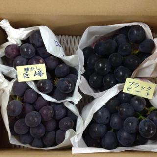 巨峰&ブラックビート 家庭用(ワケあり)2キロ箱(フルーツ)