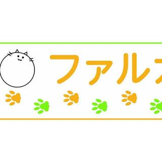 タイショウセイヤク(大正製薬)の(株)カキファルカ タオル(ハンカチ)