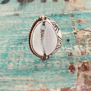 アリシアスタン(ALEXIA STAM)のシェル リング 指輪 タカラガイ(リング(指輪))