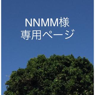 NNMM 様 専用☆沖縄県産訳あり完熟マンゴー 8kg(フルーツ)
