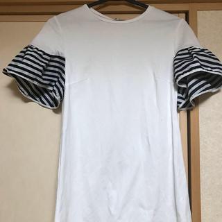 バーニーズニューヨーク(BARNEYS NEW YORK)のボーダーズアットバルコニー💕38白(Tシャツ(半袖/袖なし))
