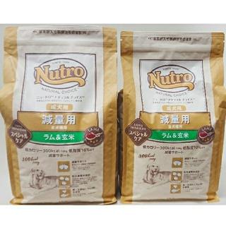ニュートロ ナチュラルチョイス 全犬種 成犬用 ラム&玄米2kg×2
