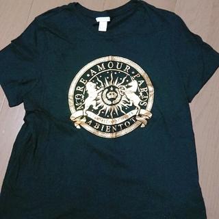 エイチアンドエム(H&M)のH&M Tシャツ (Tシャツ/カットソー(半袖/袖なし))