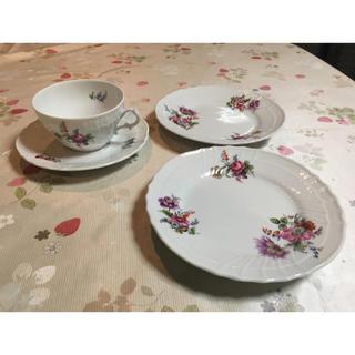 リチャードジノリ(Richard Ginori)の【発送可】リチャードジノリ カップ&ソーサー+ケーキ皿2枚(食器)