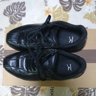 ミズノ(MIZUNO)のミズノのウォーキング靴(ウォーキング)