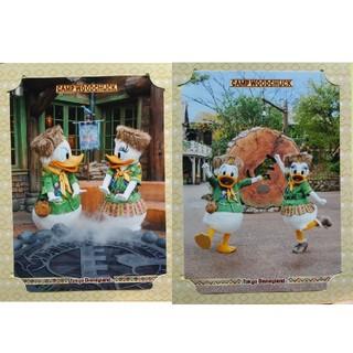 Disney - ディズニー フォトファン2枚 ドナルド デイジー