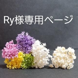 Ry様専用ページ(ドライフラワー)