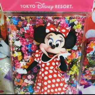 Disney - ミニー実写ミラー  イマジニングザマジック