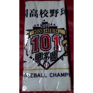 第101回全国高校野球選手権大会 甲子園  全出場校名入りタオル(記念品/関連グッズ)