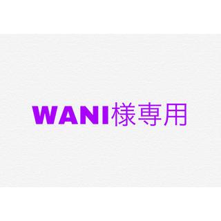WANI様専用 タイダイT(Tシャツ(半袖/袖なし))