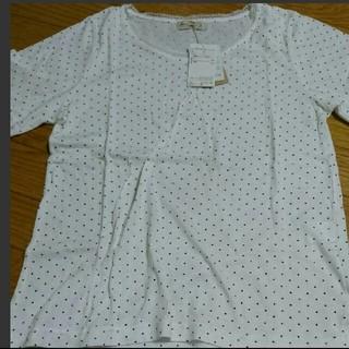 SM2 - 新品 抗菌加工 Tシャツ