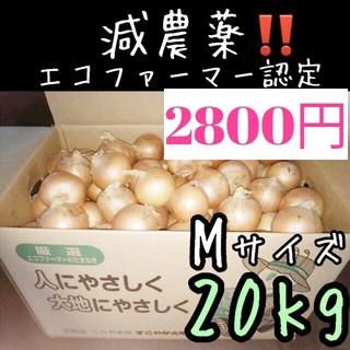減農薬 北海道産 玉ねぎ Mサイズ 20キロ(野菜)