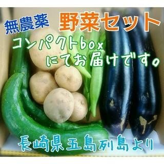 無農薬❗新鮮野菜セット(コンパクトbox) ラインナップのご確認を❗五島列島産(野菜)
