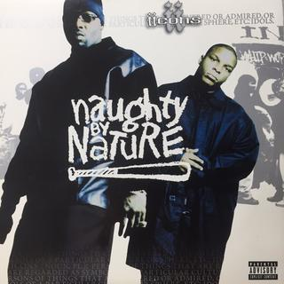 Naughty By Nature – Iicons