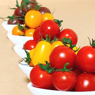 ☆食べ比べセット☆ 朝どり カラフルミニトマト 5品種 約750g 青森県産