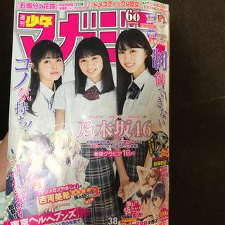 マガジン 38号 五等分の花嫁 応募者全員プレゼント 応募券(少年漫画)