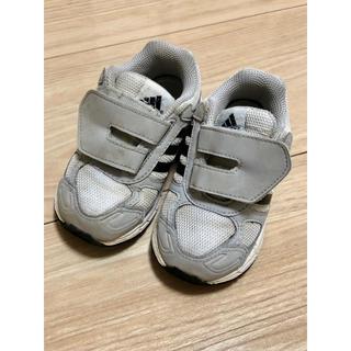 adidas - adidas アディダス スニーカー 13センチ 13㎝