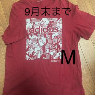 adidas - メンズtシャツ     M  期間限定
