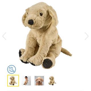 IKEA - IKEA 犬ぬいぐるみ ゴールデンレトリーバー