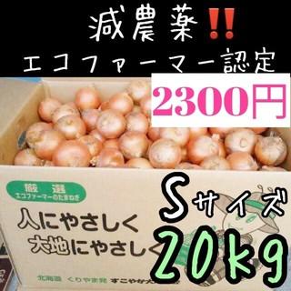 北海道産 減農薬 玉ねぎ Sサイズ 20kg(野菜)