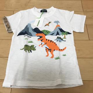kladskap - クレードスコープ 新品 恐竜たくさん 110