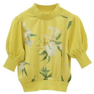 eimy istoire - 新品エイミーイストワールOlivia flower コンビニットプルオーバー