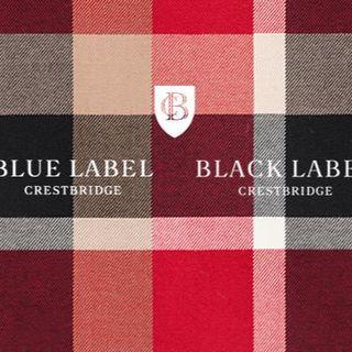 BURBERRY BLUE LABEL - 2019SS 今期新作 ブルーレーベルクレストブリッジ ワンピース36