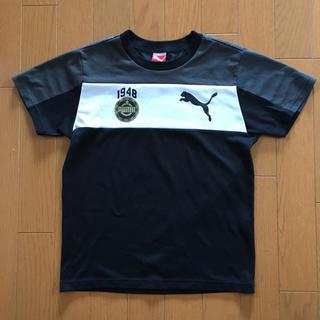 PUMA - プーマ  140 Tシャツ