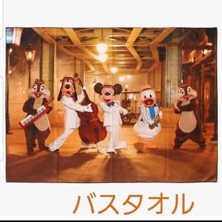 Disney - 【パーク完売品★新品】イマジニングザマジック★実写★バスタオル